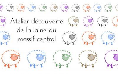 Visite et découverte de la laine du Massif Central